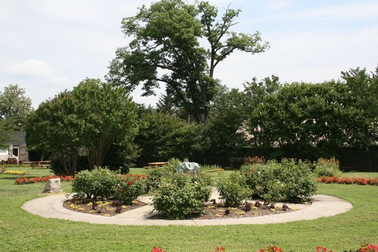 Howard Peters Rawlings Conservatory and Botanic Gardens of Baltimore:                   Outside garden