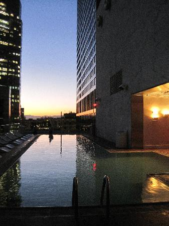 The Standard Downtown LA: rooftop pool