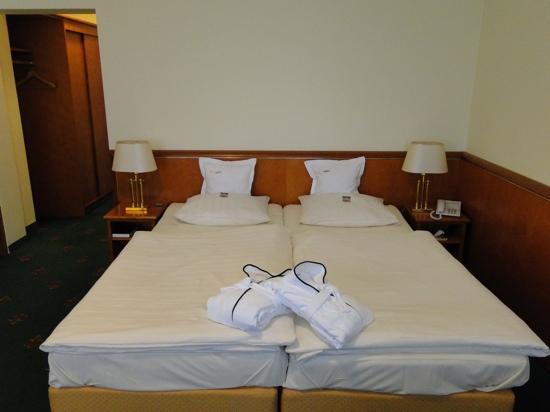 Hotel Villa Hugel: Munich Room