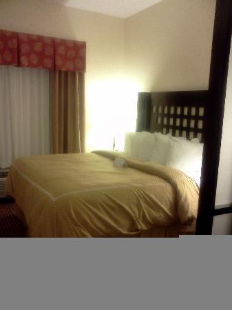 Comfort Suites Leesville : King bed