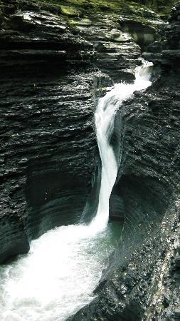 Watkins Glen State Park: Largest waterfall