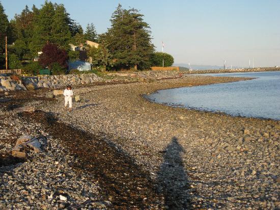 Ocean Point Bed & Breakfast : Beach nearby.