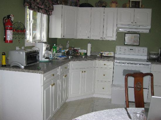Ocean Point Bed & Breakfast : Lovely spacious kitchen.