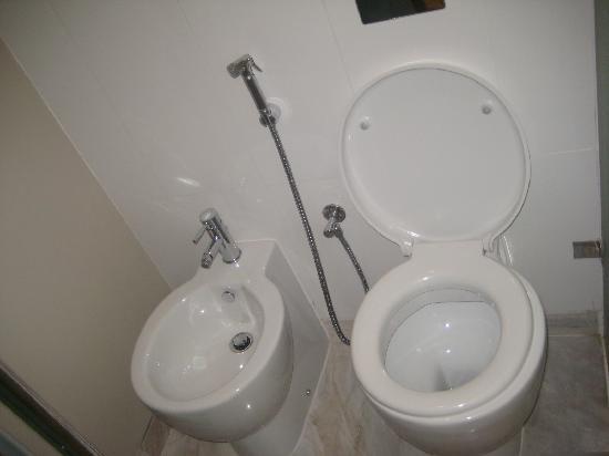 โซฟิเทล ดูไบ จูเมราห์บีช: This is the entire toilet area