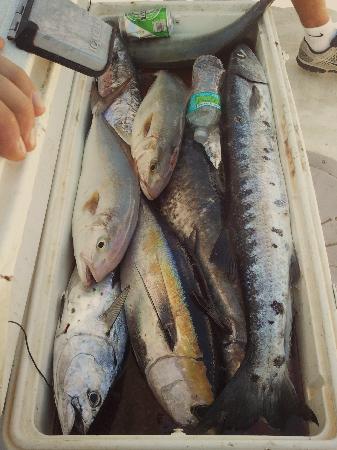 Lady Pamela II Sportfishing: overflowing fish cooler