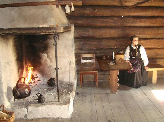 พิพิธภัณฑ์ท้องถิ่นนอร์เวย์: Inside a dwelling
