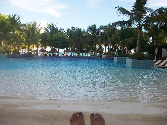 Oasis Palm: Pool
