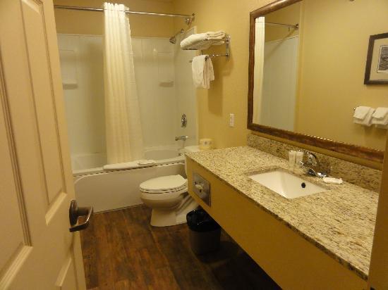Denali Princess Wilderness Lodge: bathroom,bldg. 2A,266