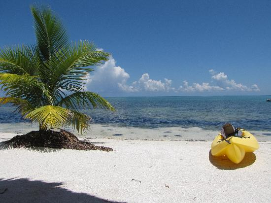 St. George's Caye Resort: beach