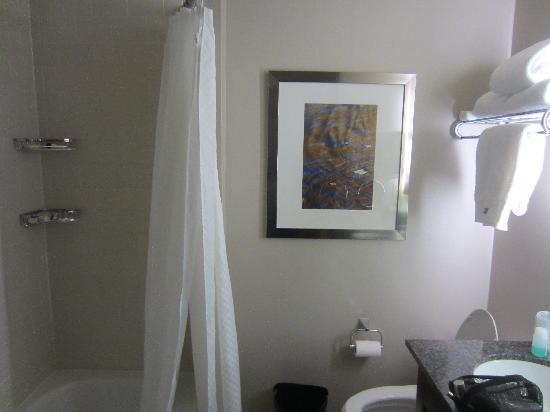 The Westin Great Southern Columbus: bath
