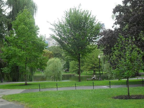 Boston Common: Garten