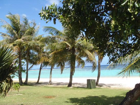 Ypao Beach Park: 木陰からビーチ撮影