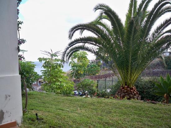 Hotel Riu Palace Madeira: VUE DE LA CHAMBRE