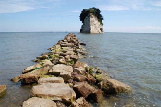 Mitsukejima Island: 踏み石がぎっしり