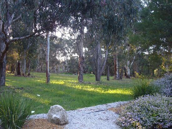 Gilgara Retreat: driveway to retreat
