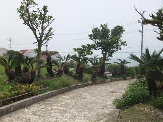 Tojinbaka: 整備された敷地内(向こうは海が一望できる)