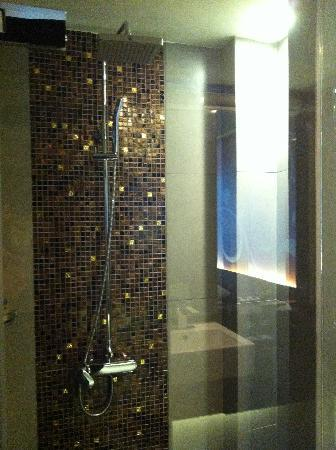 พาร์ค พลาซ่า กรุงเทพ สุขุมวิท 18: shower