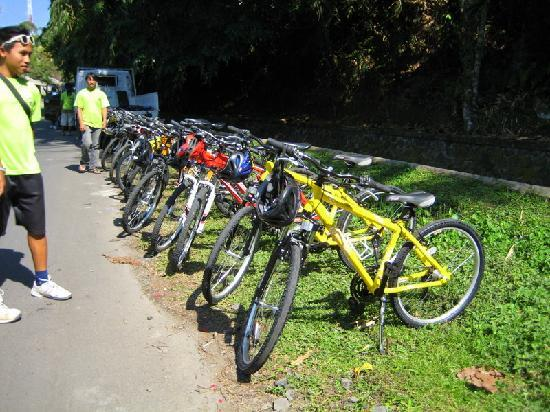 Banyan Tree Bike Tours: Our bikes and our friendly handsome guide :))