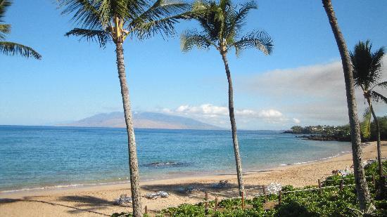 Scuba Luv Maui: Makena Beach