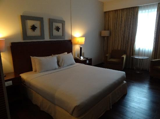 โรงแรมซานติกาพลเทียนัค: Deluxe room