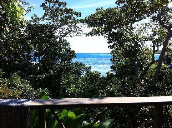 Nanuya Island Resort: View from our room