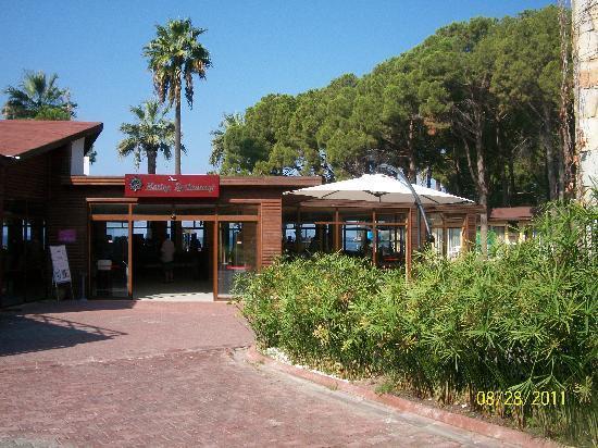 Omer Holiday Resort: villaggio nella pineta
