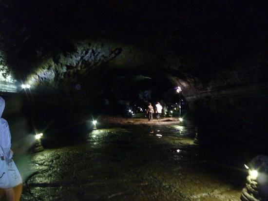 Manjanggul Cave: こんな感じがずっと続きます。