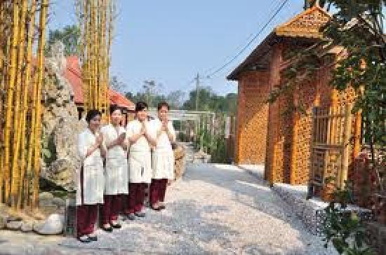 Thien Tam Vegetarian Restaurant: Thien Tam Restaurant