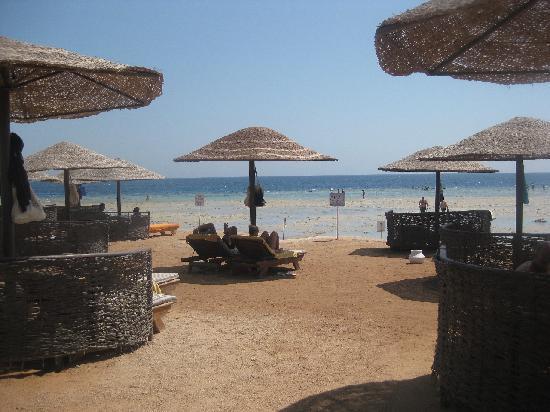 โรงแรมมาคาดี พาเลส: Beach and Sea