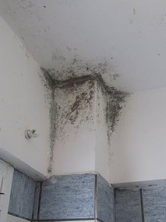 Joanna Hotel Apartments: mouldy bathroom