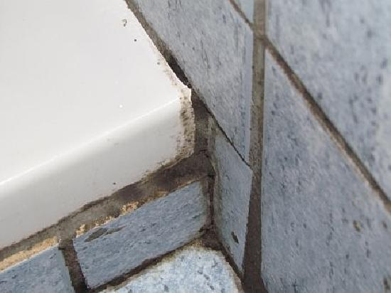 Joanna Hotel Apartments: disgusting grouting