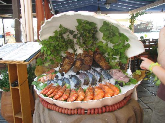 Villa Vasilis: Рестораны Ретимно предлагают разнообразный ассортимент  морских продуктов,правда совсем не дешев