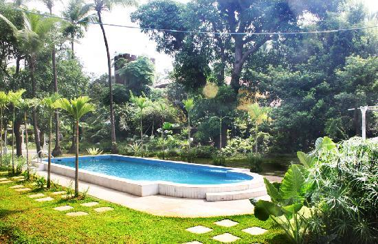 Hotel Soraya: The Pool
