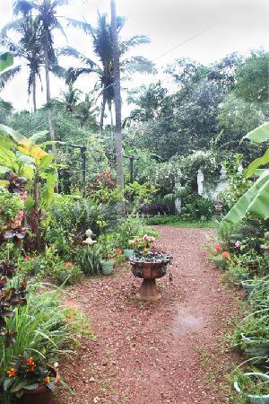 Hotel Soraya: Our Garden in Summer