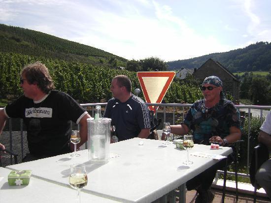 Gastehaus Weinschroterhof: With some friends on the terras of Weinschroterhof