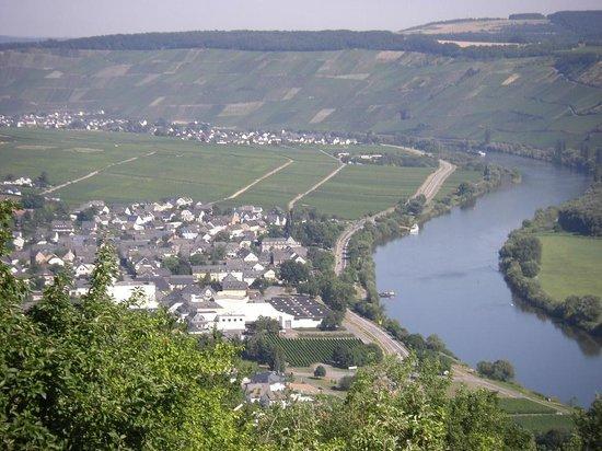 Gastehaus Weinschroterhof: A view on Neumagen-Dhron and Trittenheim taken from a waterpark above Leiwen