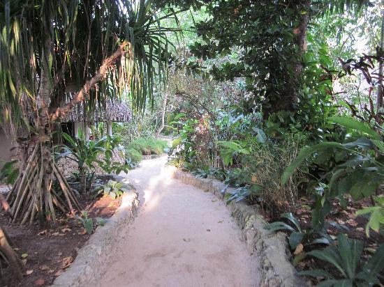 บรีกัสบีชรีสอร์ทวานัวตู: Pathways around the resort