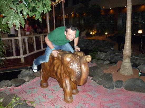 Hotel Beatriz Costa & Spa: Me riding an elephant :)