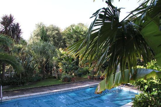 Cary Court Hotel: Pool area