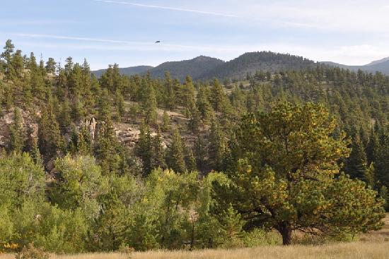 Ute Trail River Ranch : Majestic Rocky Mountains