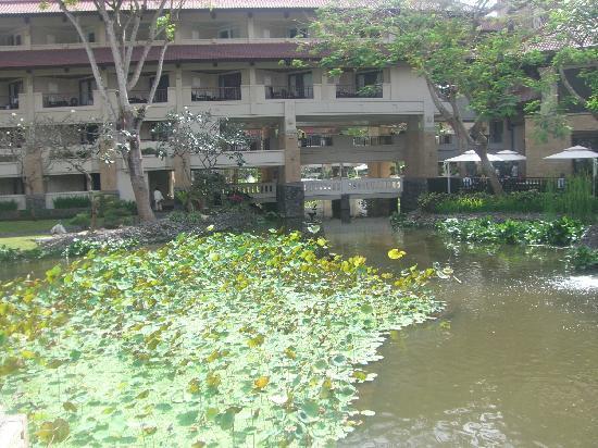 อินเตอร์คอนติเนนทัล บาหลี รีสอร์ท: pond