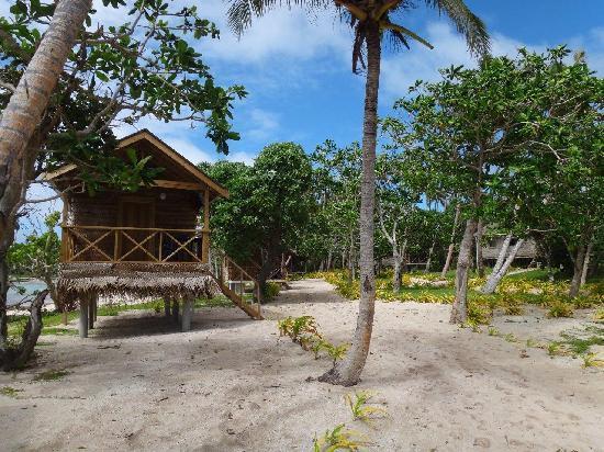 Matafonua Lodge: Fales