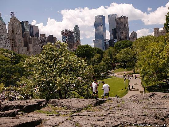 เดอะแฮมป์ตันอินน์ ไทม์สแควร์นอร์ท: Central Park