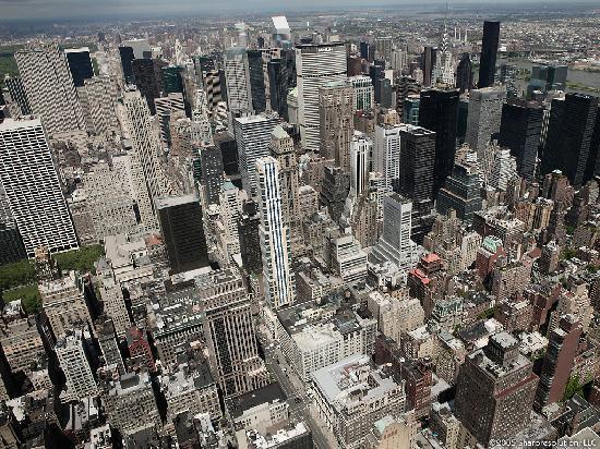 เดอะแฮมป์ตันอินน์ ไทม์สแควร์นอร์ท: View from the Empire State