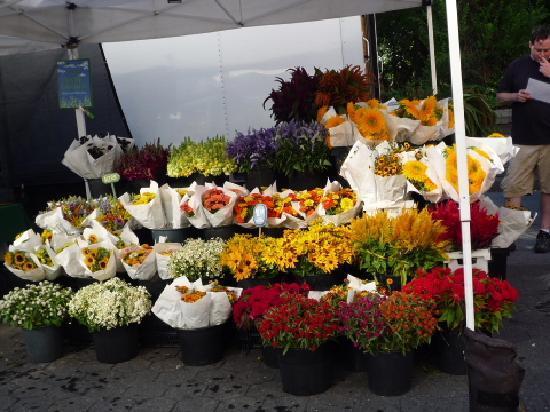 Union Square: グリーンマーケットのお花
