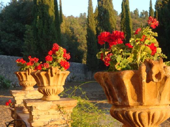 Tenuta di Spannocchia: flowers on the wine tasting terrace