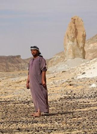 White Desert: hamada www.desert-safari-egypte.com