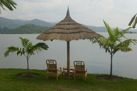 Palm Garden Resort: Exotic garden.