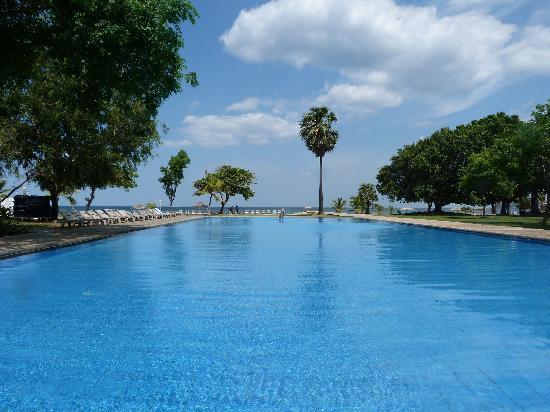 โรงแรมชายา บลู ทรินโคมาลี: Pool & beach at Chaaya Blu