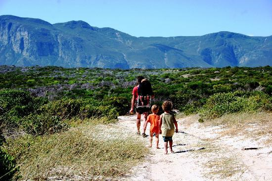 Stanford, แอฟริกาใต้: Walking Trails in the mountains and fynbos